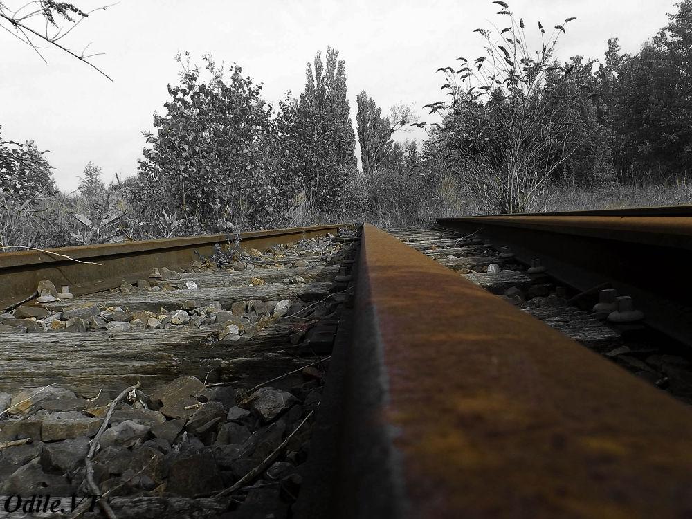 Chemin de fer by Odilevantroys