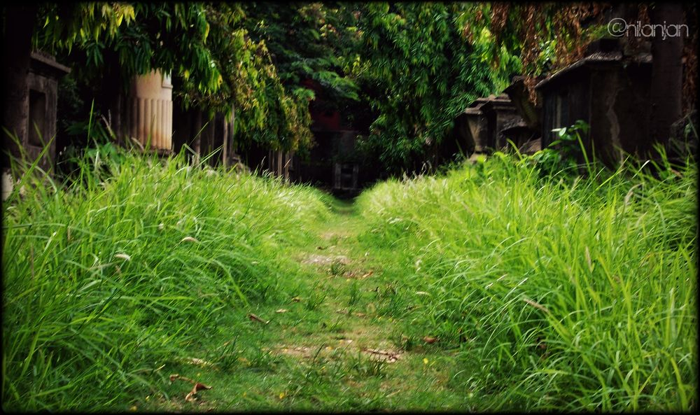 Do not go where the path leads... go instead where there is no path and leave a trail... by Nilanjan