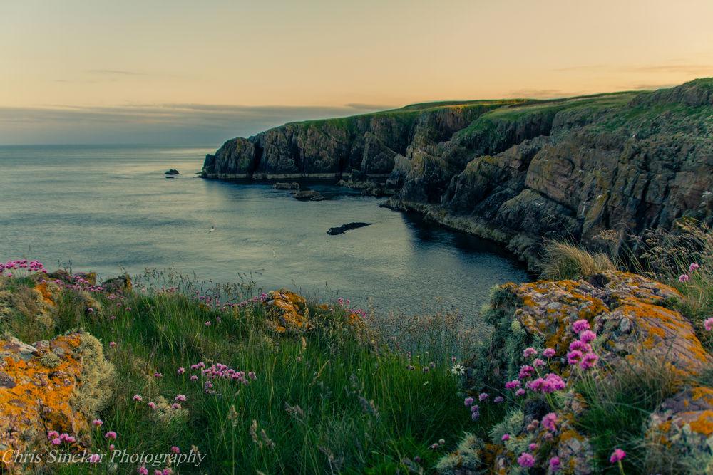 Crescent Coast by Chris Sinclair