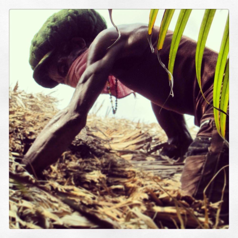 Photo in Random #jamaica #nagril #rasta