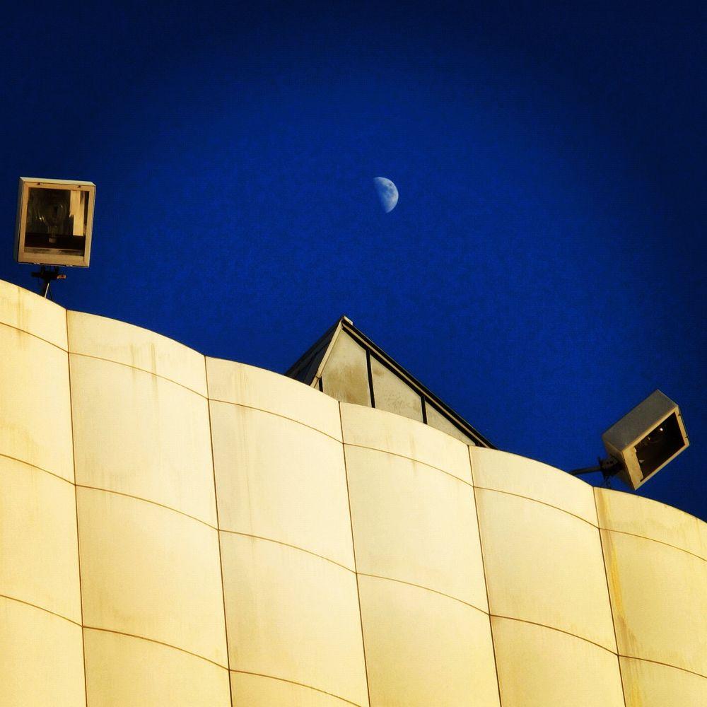 Moor Rise, Museum Of Modern Art, Los Angeles by CB Harding