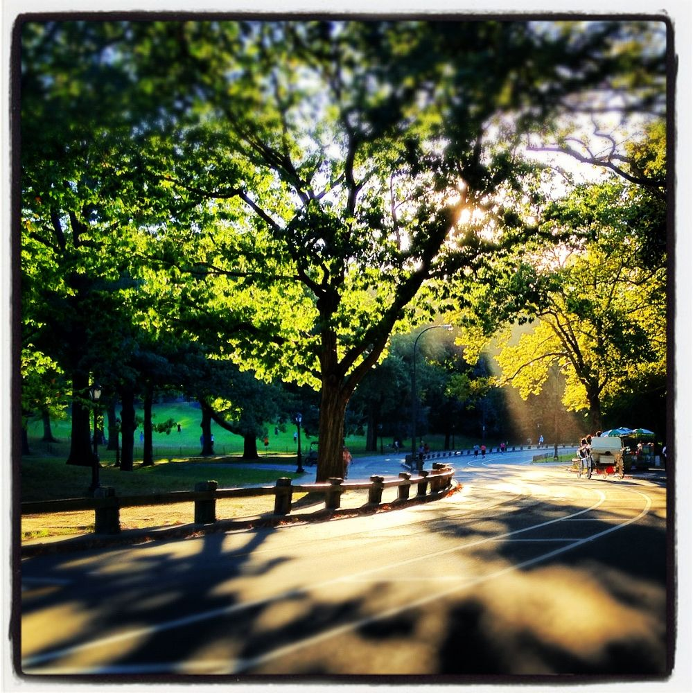 Photo in Random #central park #parks #winding road