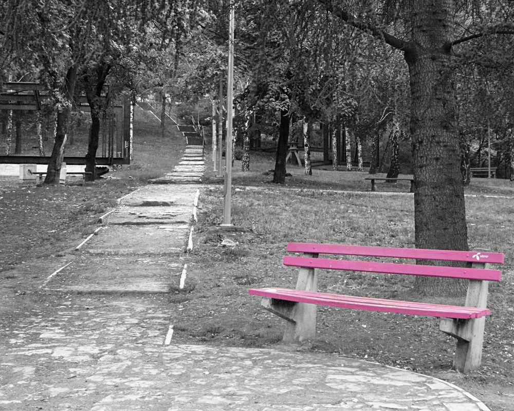 Pink by Dragana Pavlovic