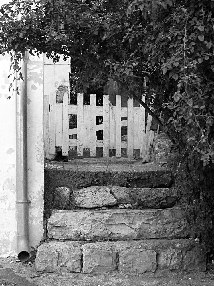 The Old Gate by Dragana Pavlovic