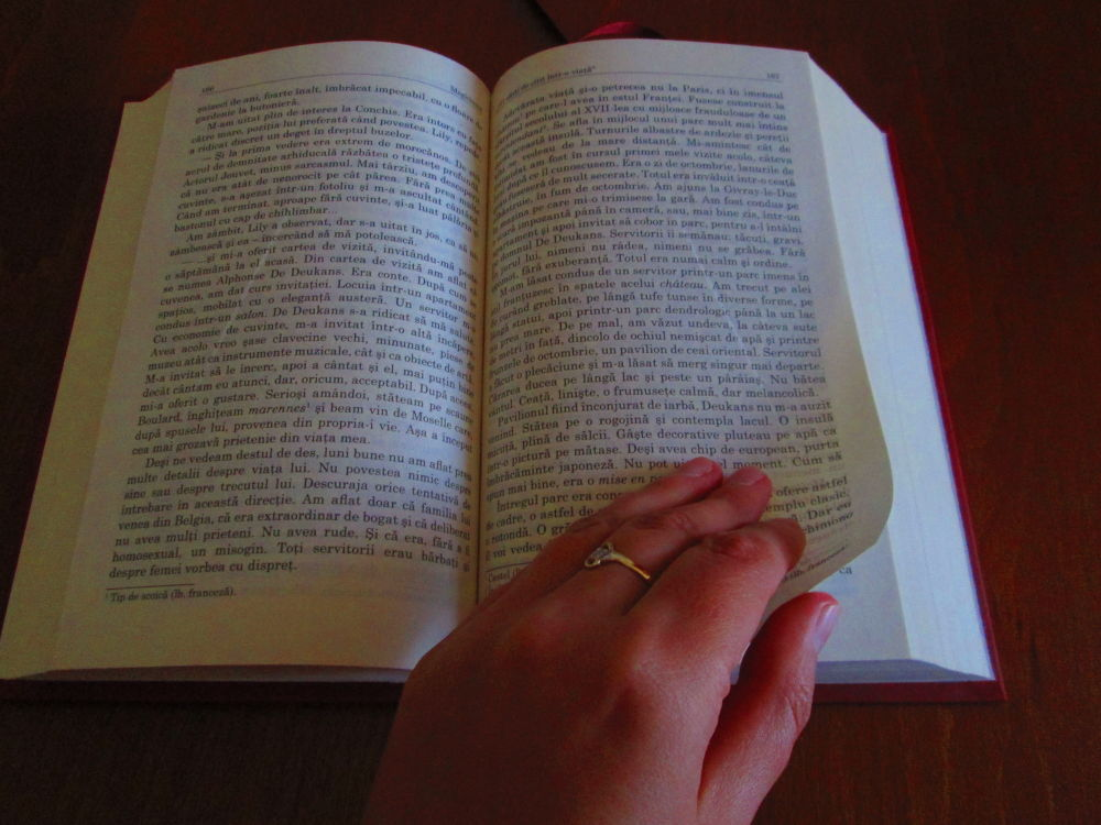 reading between the lines by Gratiela