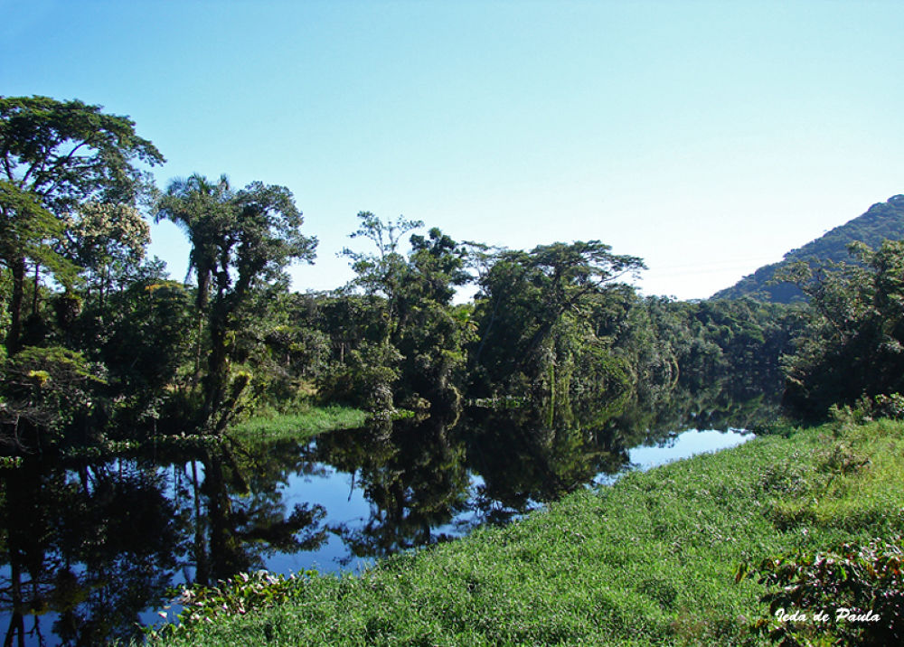 River V by iedadepaula5
