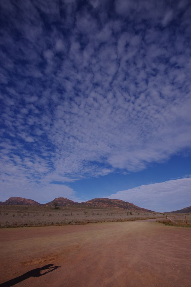 Capturing the dry landscape by katherineannpotter
