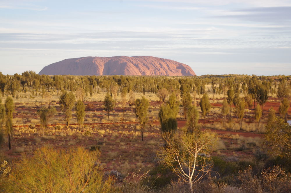 Photo in Landscape #uluru #landscape #northern territory #australia #outback #red centre