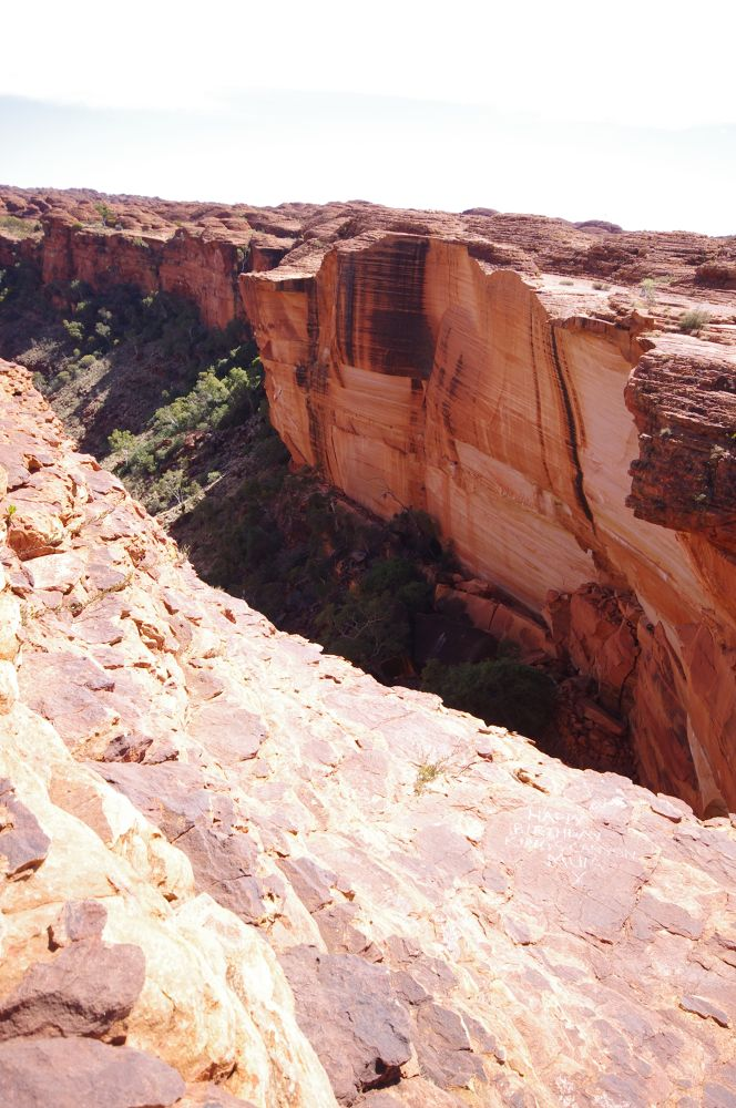 Photo in Landscape #kings canyon #outback #northern territory #australia #red centre