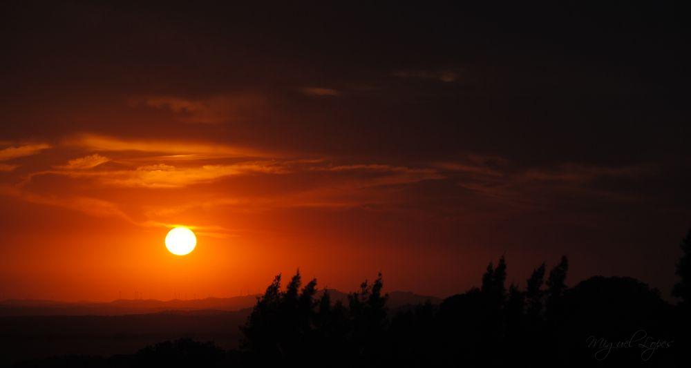Photo in Nature #suncet #ocaso #pintura