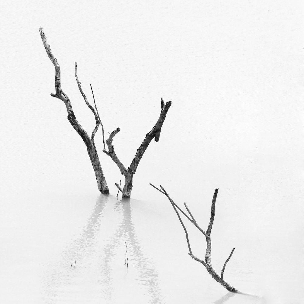 The Death by Trias Prayogi