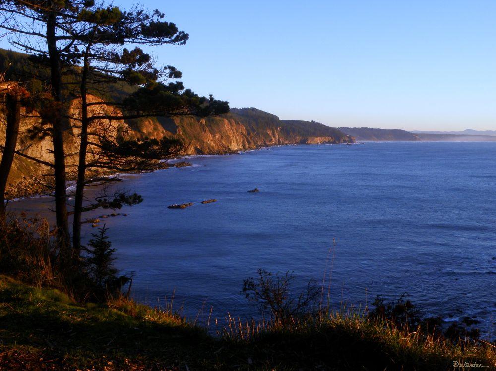 Cape Arago South Cliffs by tatiacha
