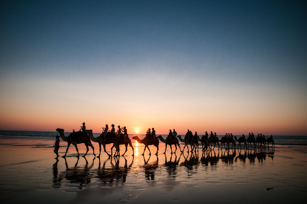 Ships of the Cable Beach by Pat Charles