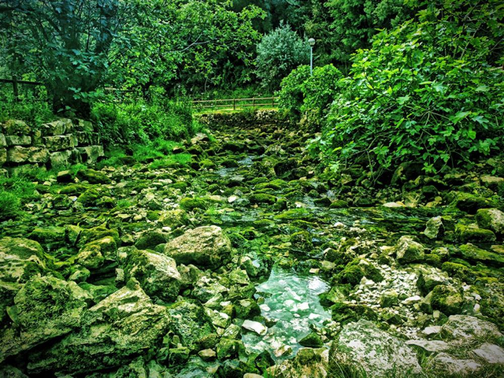 green by EntreSofias