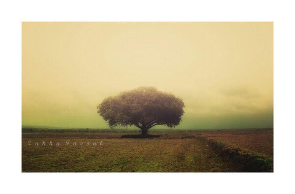 alone by zakkyfaesal