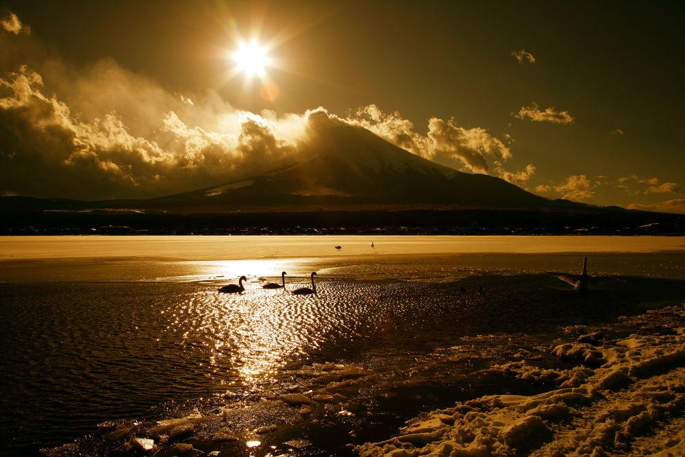 Golden sacred mountain Fuji by KUMA3
