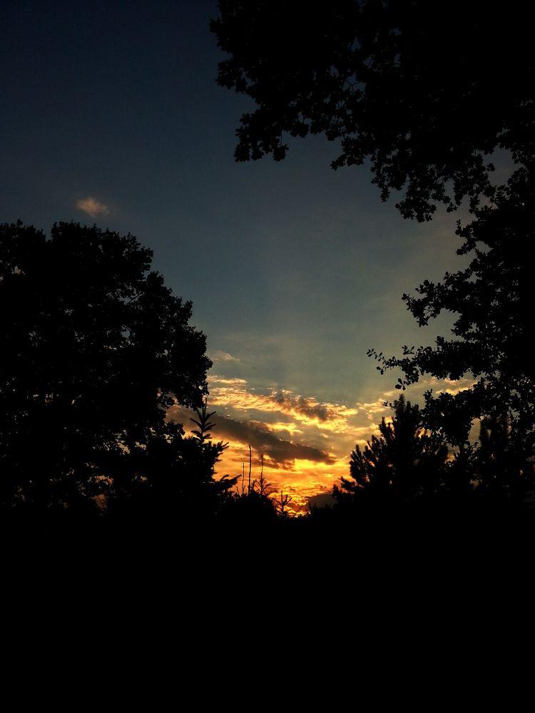 sunset by Peggy Heidan