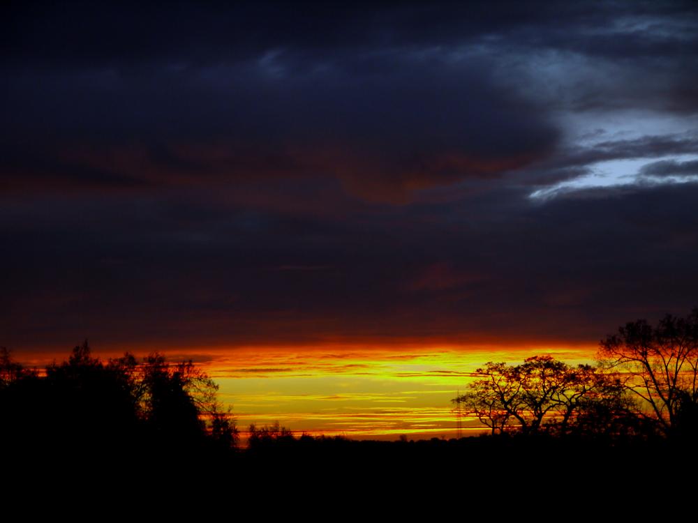 Photo in Random #ypa2013 #sunset #morning glory #morning #sun #nature #landscape #sonne #sky #himmel