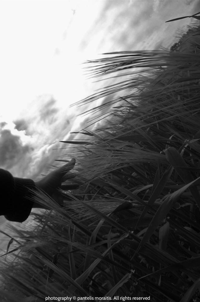 Photo in Black and White #mystiko