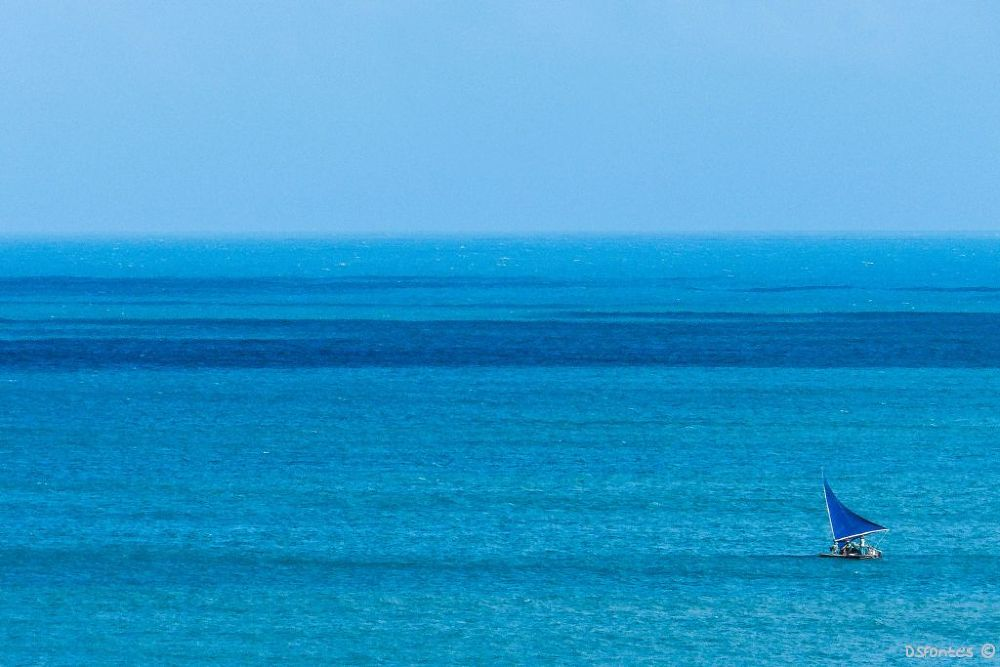 Can't feel blue with all this blue, can we? (Fortaleza City) by Doris Fontes