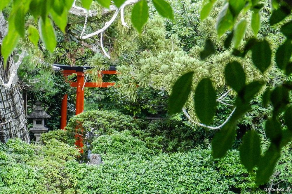 Ryōan-ji (Kyoto) by Doris Fontes