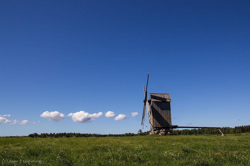 Summer by Jan Lepamaa