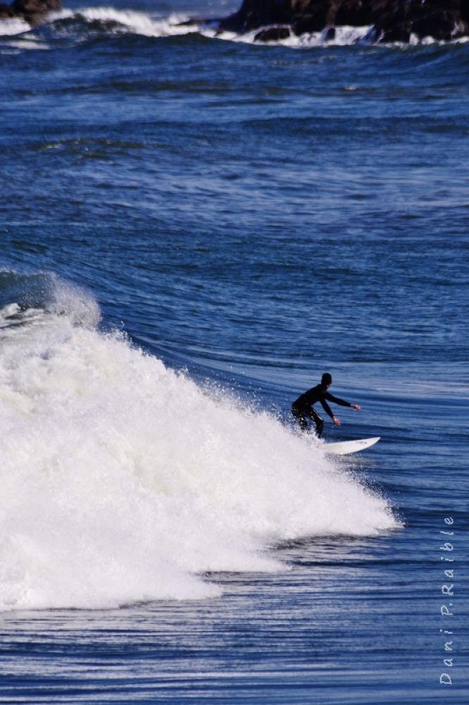 surfing by Dani Raible