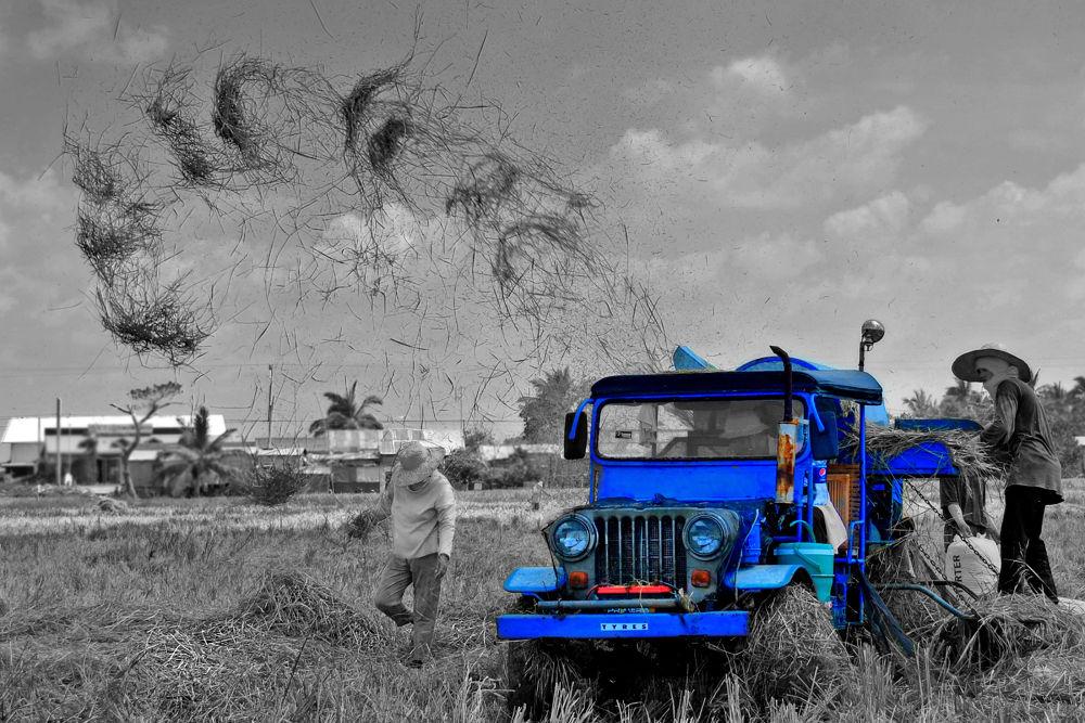 the harvest by jmedigitalphotography