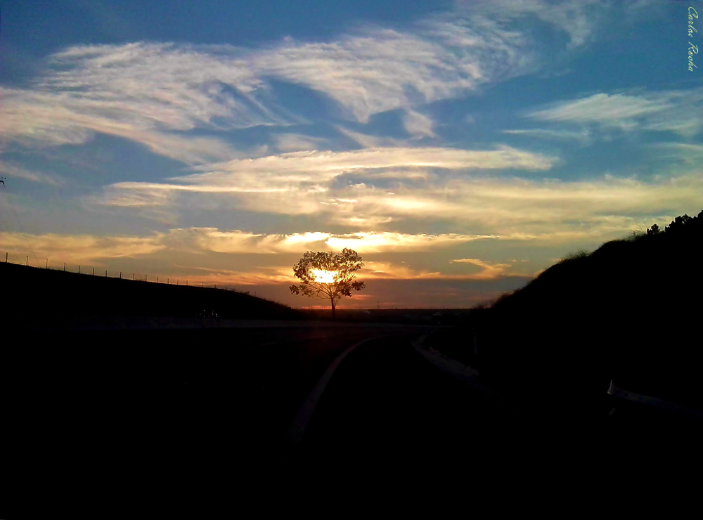 Pôr-de-sol fotografado a conduzir (Sunsets seen and photographed while driving) by carlosrocha397948