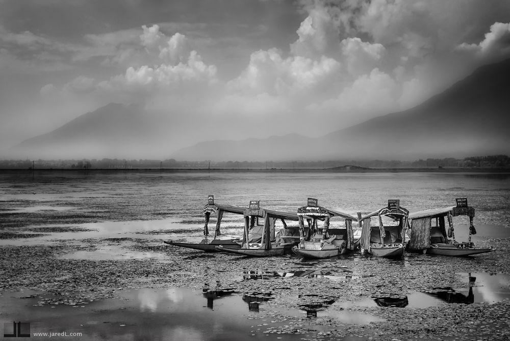5 Shikaras by Jared Lim