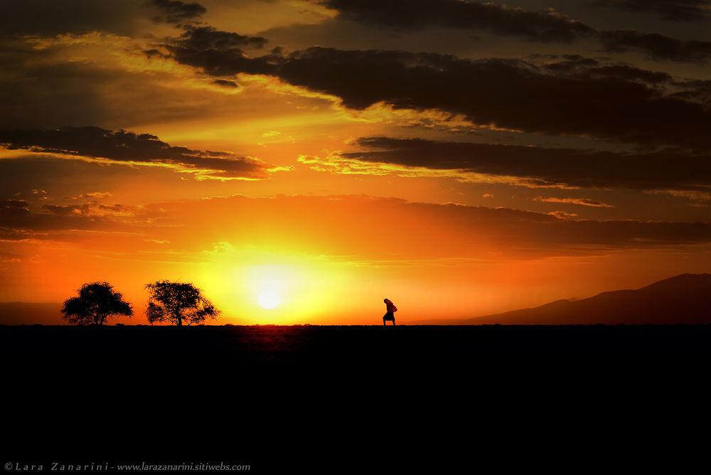 walking in the gold  by zanarini lara