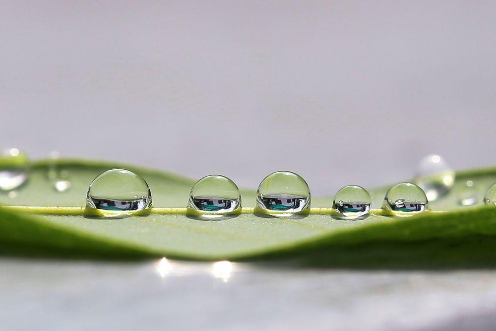Photo in Random #water drops #macro #canon 100mm f2.8l #ypa2013