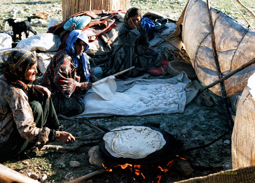 محمود اندام PHOTO BY : M.ANDAM IRAN  by mahmoodandam