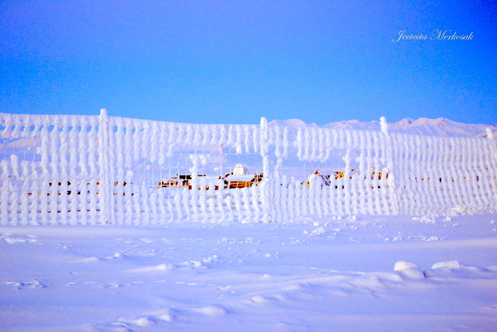 fencing covered in frost by jititamiqusaaq