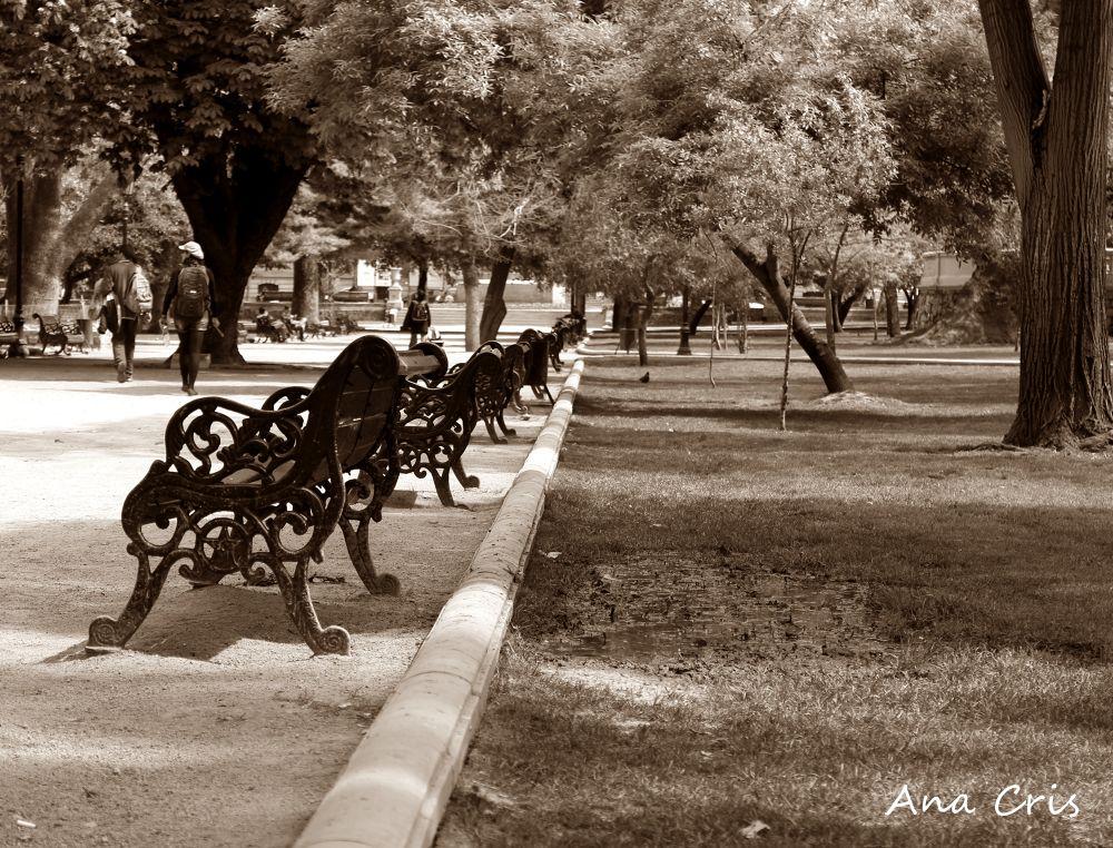 Parque by Aninha Cris