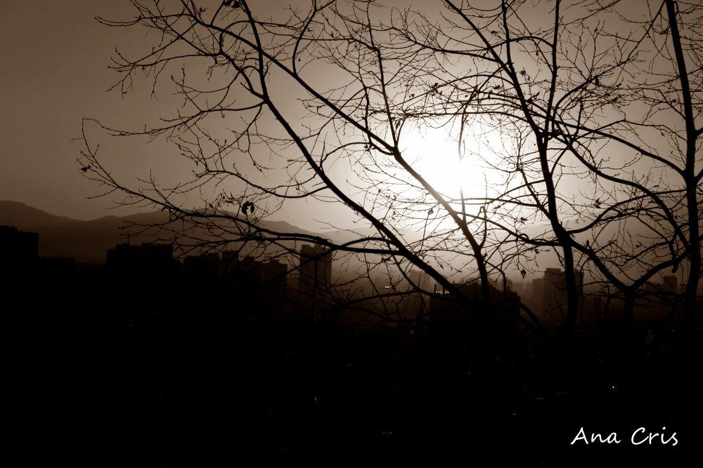Untitled by Aninha Cris