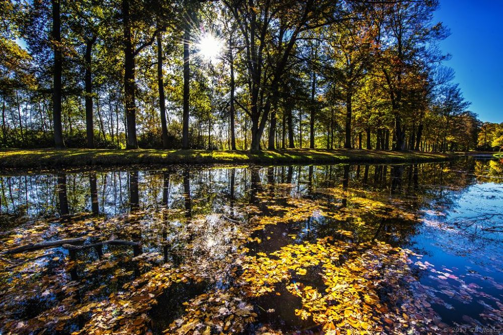 Groeneveld, autumn 2013 by TH Hoang