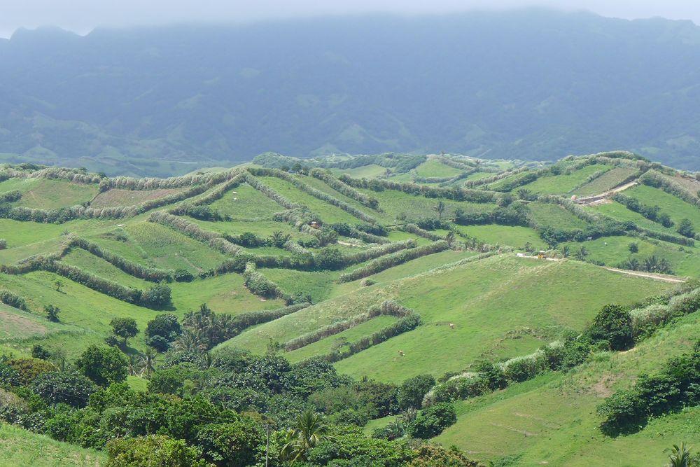 "@Mandy Navasero  ""Hills as far as your eyes can see"" by mandynavasero"