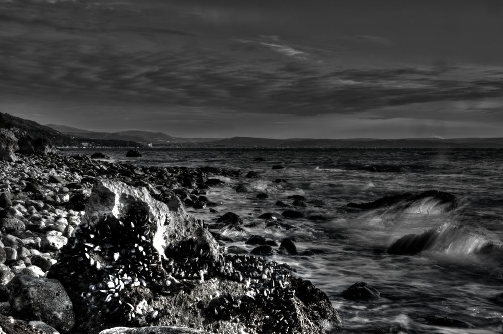 waves BW by Luca Marcato