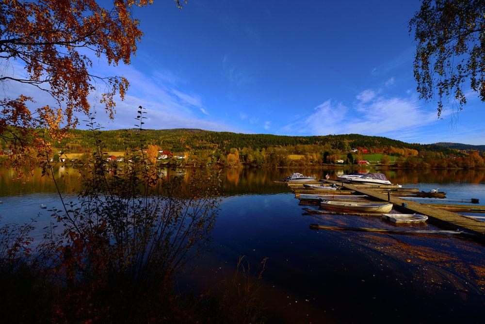 Autumn by josephmichalak1
