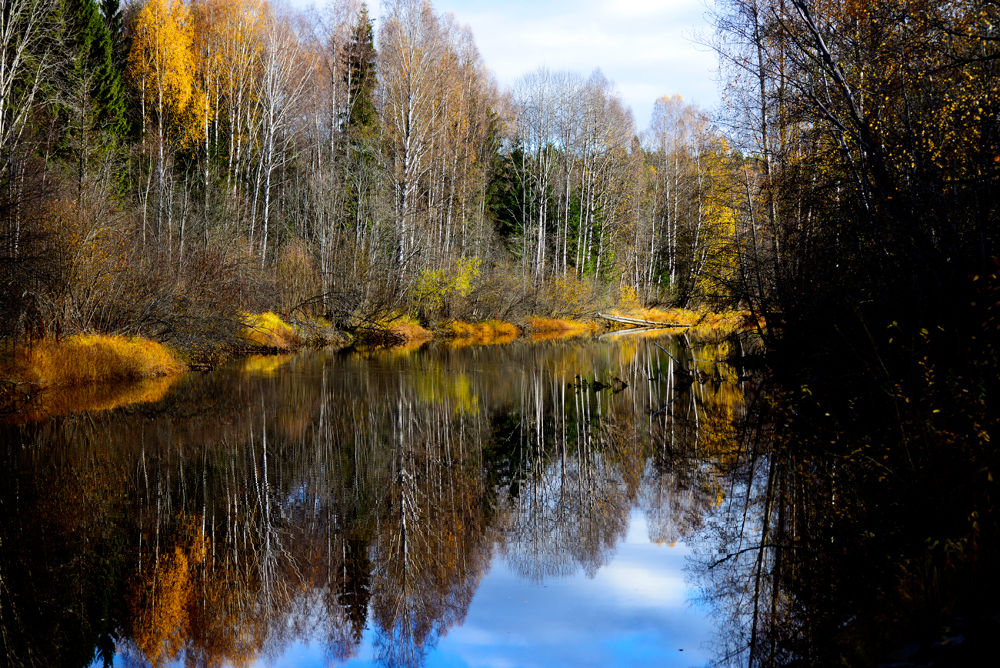 After Autumn in Norway by josephmichalak1