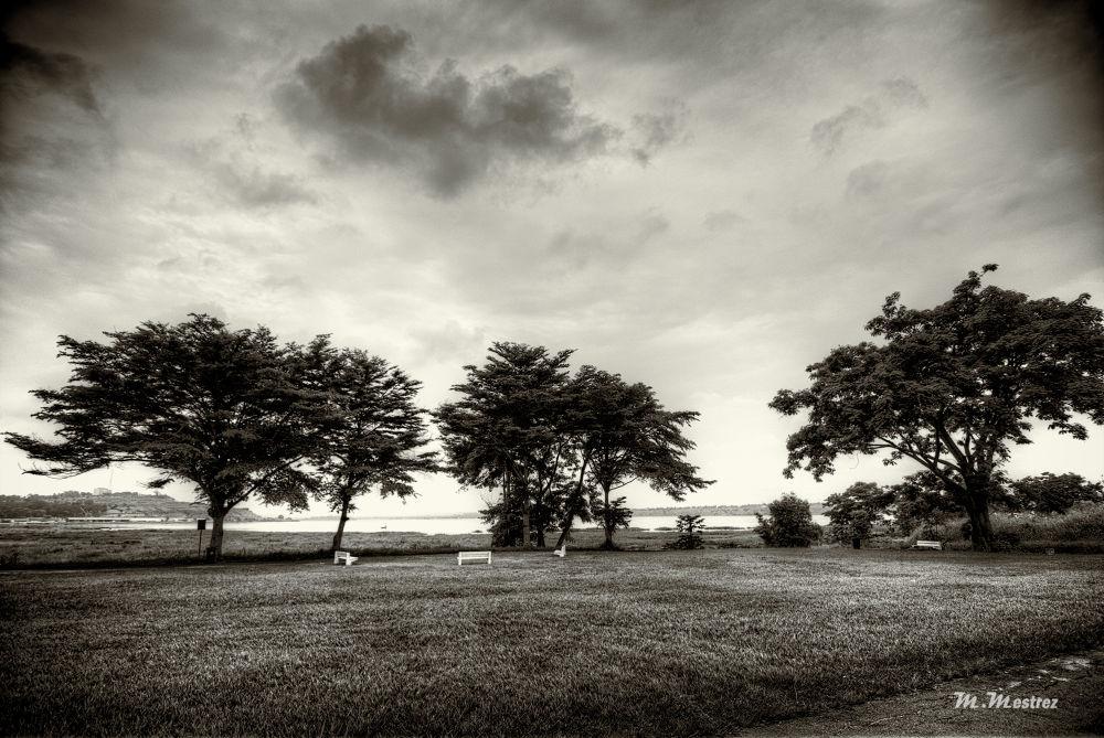 Kinshasa by mike1805