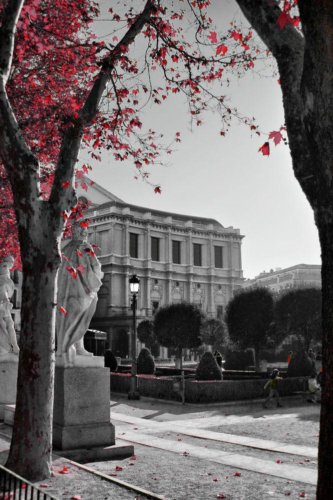 Palacio Real (Madrid) by julio rubio