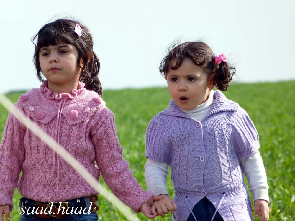 Friendship  by saadhaadrifai