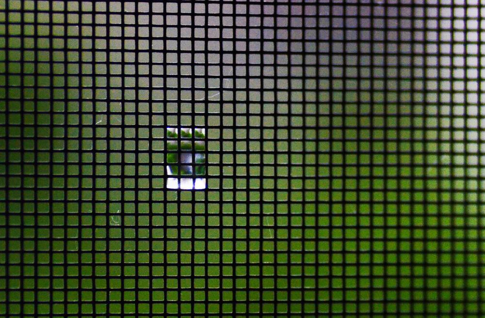 raindrop on the mosquito net by Alexandra Csuport