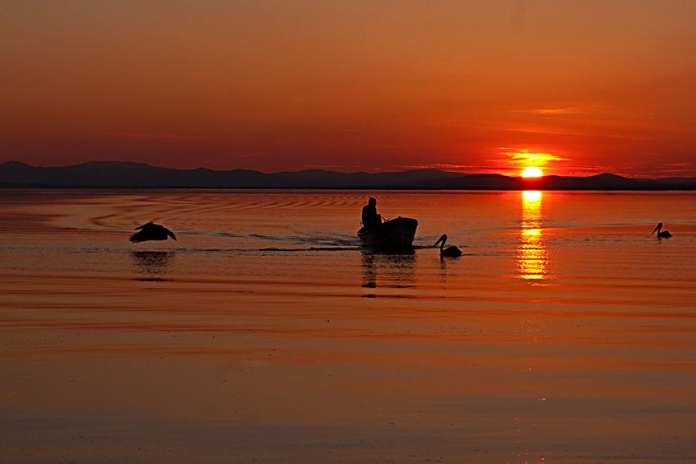 Photo in Landscape #bandırma kuşcennetinden