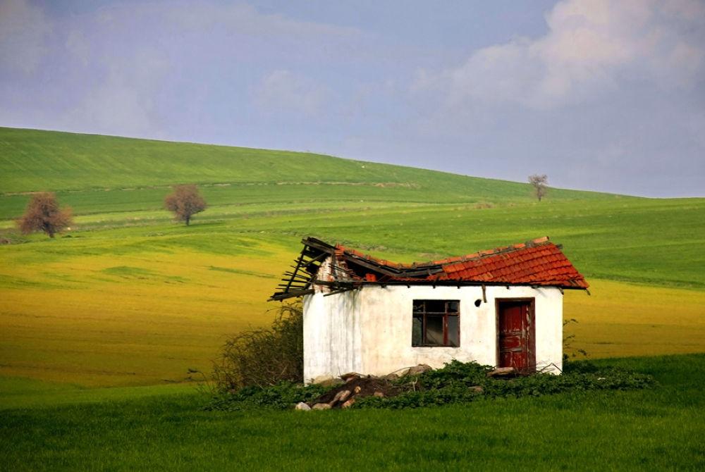 longing for spring by muratbandirma