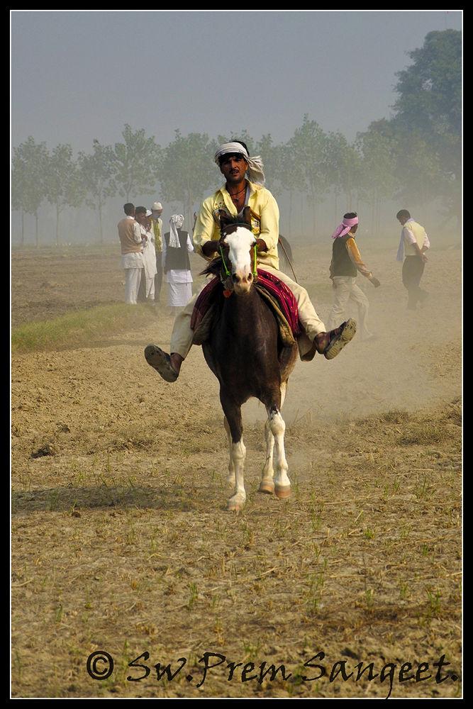 Horse Race by Swami Prem Sangeet ( Sanjay Jaiswal )