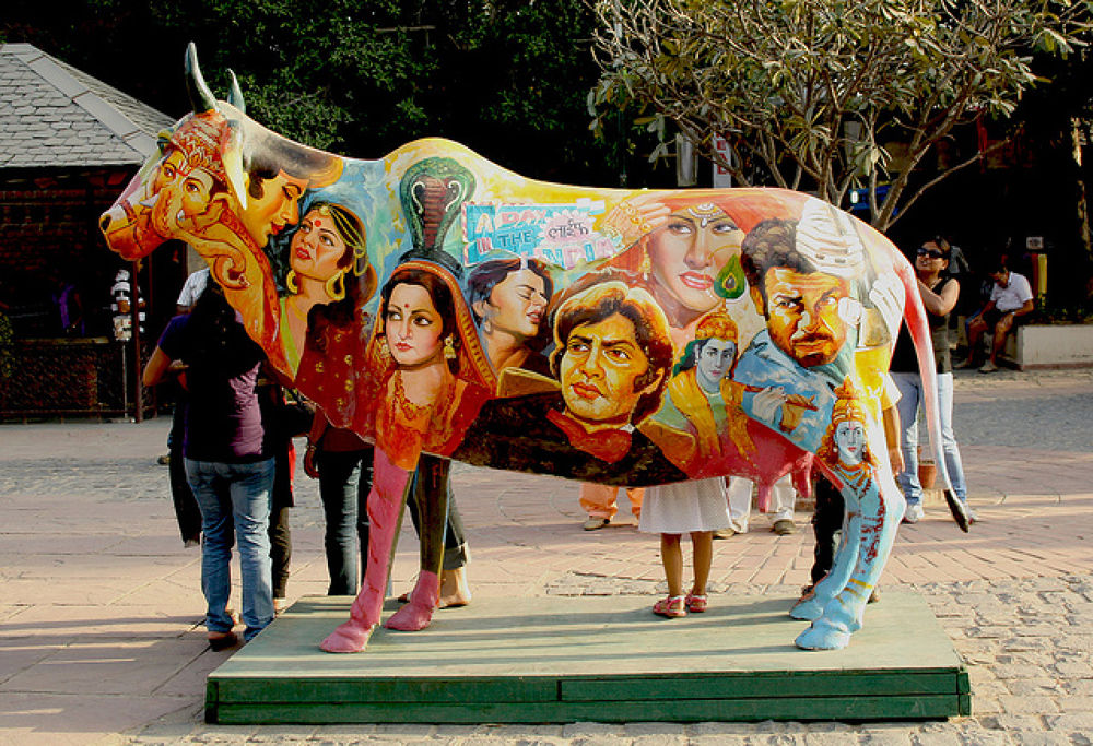 Cow by Shobhit Chaturvedi