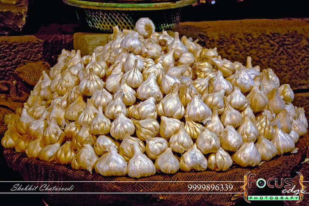 Garlic by Shobhit Chaturvedi